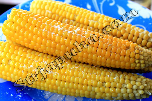 Вареная кукуруза (в початках). Как выбрать и варить кукурузу