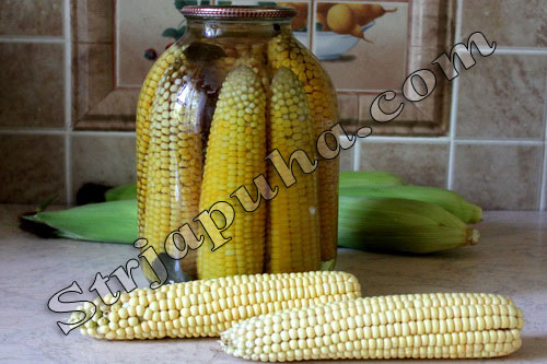 Кукуруза консервированная (в початках)