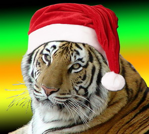 год тигра 2010 год
